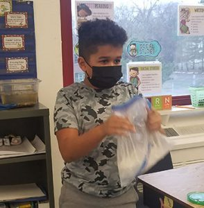 student shakes bags containing cream and sugar and ice to make ice-cream